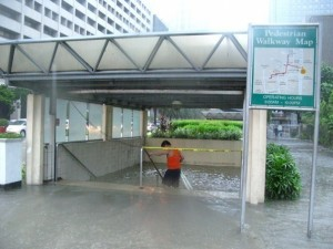 ayala submerged